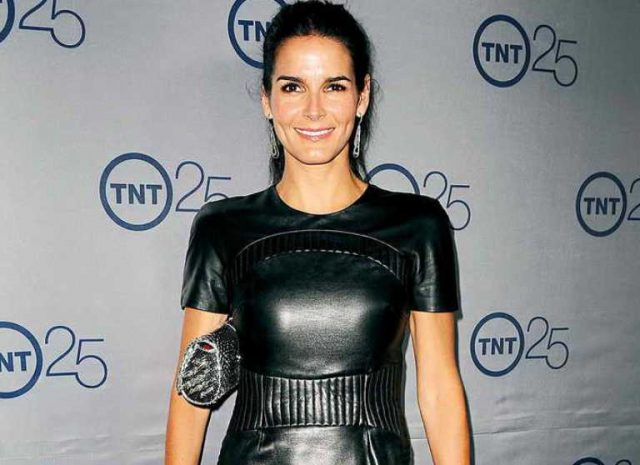 Angie Harmon Bio, Net Worth, Body Measurements, Is She Related To Mark Harmon?